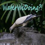 Modpack WaterWeDoing